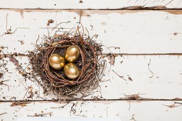 Golden eggs in nest