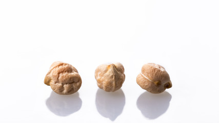 Chickpea seed