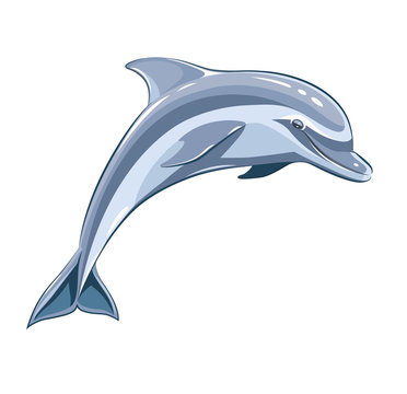 Dolphin. Eps8 vector illustration. Isolated on white background