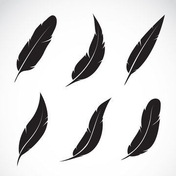 Vector group of black feather isolated on white background. Icons.