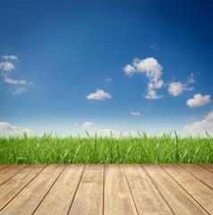 Fototapete - Landschaft / Himmel / Gras / Holz