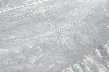 signs of Nazca
