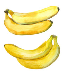 pair of bananas, watercolor set