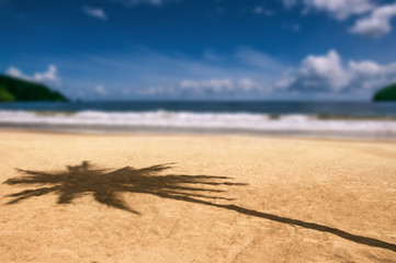 Maracas bay Trinidad and Tobago beach palm tree shadow on the sand daytime hot sun weather popular travel destination