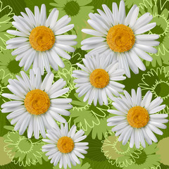 Seamless pattern with daisies, camomiles