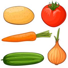 Vector cartoon vegetables