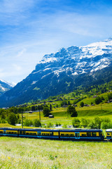 Wall Mural - Train crossing Alps countryside