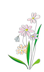 sketch of flowers on the white background