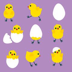 Easter chicken set