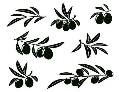 set of olive branch
