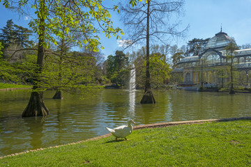 Lake in front of the Crystal Palace in Madrid