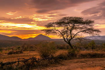 Fotobehang Afrika Evening view of the territory of the tribe Bana