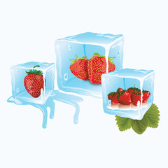Strawberry in ice cubes