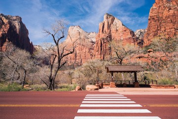 Wall Mural - Zion Bus Stop