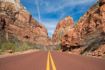 Wall Mural - Zion Utah Road