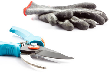 Pruning shears and gardening gloves