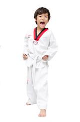 Little tae kwon do boy martial art