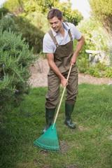 Man in dungarees raking the garden
