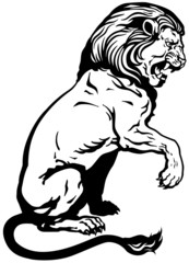 sitting lion black white