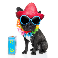 Canvas Prints Crazy dog holiday summer dog