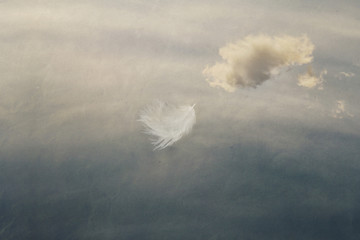 feather flying in the sky, ease, easiness Wall mural