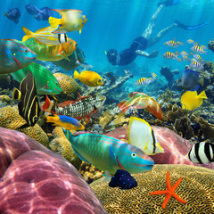 Man underwater coral reef and tropical fish