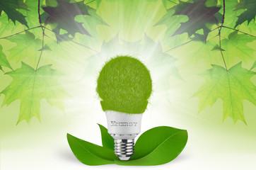 grüne Energie - Ökostrom
