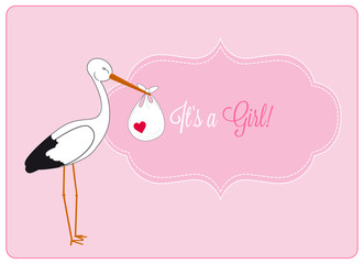 baby girl announcement card, stork brings bundle