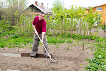 Man leveled seedbed rake in the garden