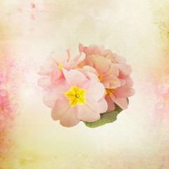 Card with Flower buds on watercolor background