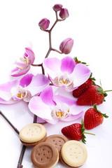 Orchidea,fragole e biscotti