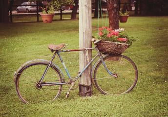 Aluminium Prints Picnic Old bike