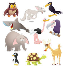 Atotal of animals and birds