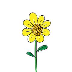 Hand drawn sun flower on white