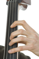 Detail of double bass with fingers - Isolated