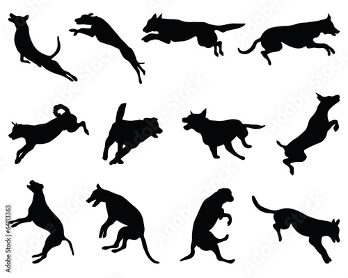 quotblack silhouettes of jumping dogs vectorquot stock image