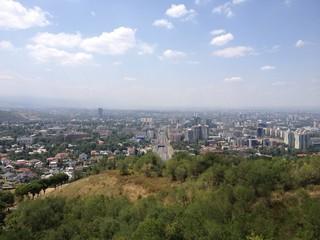 Almaty view