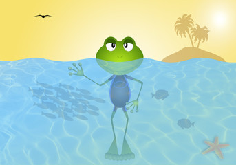 Frog in the sea in summertime