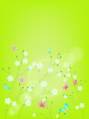 Fresh green background with flowers and butterflies. Place for y