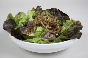 salad of bibb lettuce and onions