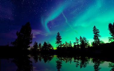 Northern lights aurora borealis in the night sky