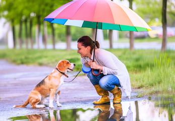 Woman with his beagle dog sitting ander big bright umbrella