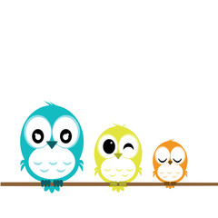 cute bird family