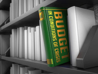 Budget in Conditions of Crisis - Book Title.