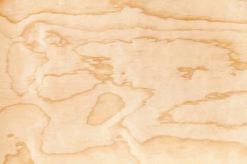 Closeup new plywood background texture. Macro photo