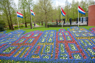 Fototapete - Colorful flowers pattern in dutch garden Keukenhof