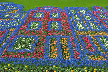 Fototapete - Flowers pattern in Keukenhof Garden, Netherlands