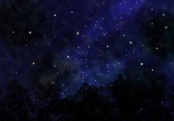 森と空の背景・夜空