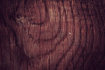 Tekstura drewna