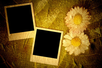 Two empty instant photo frames